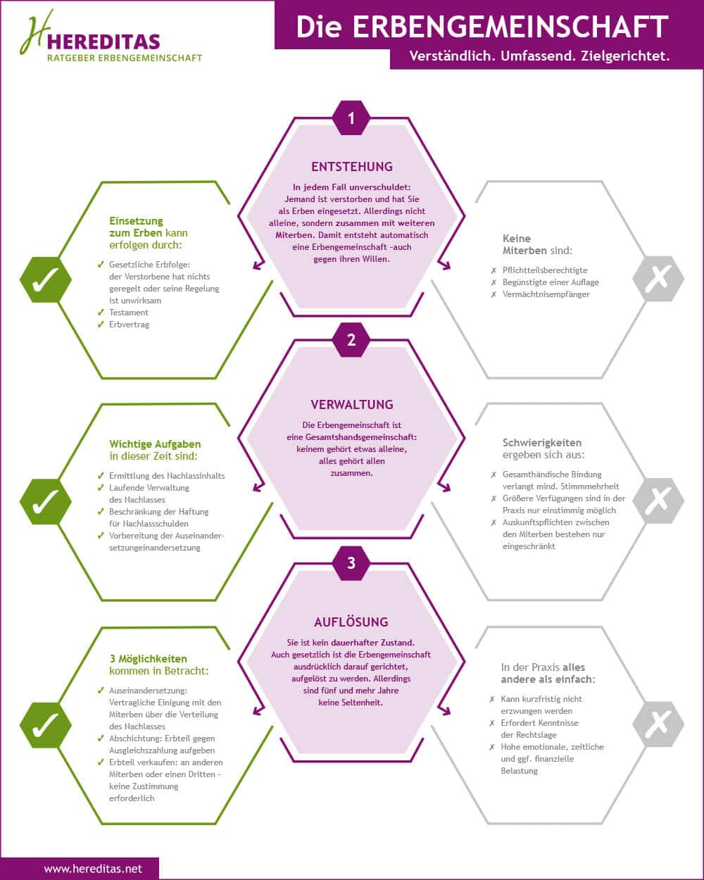 Infographik Erbengemeinschaft